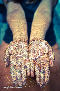 A picture of hands adorned in the art of Magic Tree Henna.