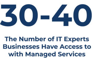 With a Managed Services Provider your business will have access to 30-40 IT