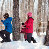 Kids play in the snow during Maple Sunday.