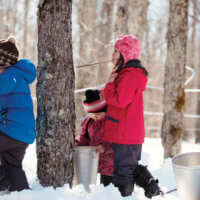 Children playing on Maple Sunday