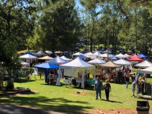 A picture of the community fair, courtesy of arabcity.org