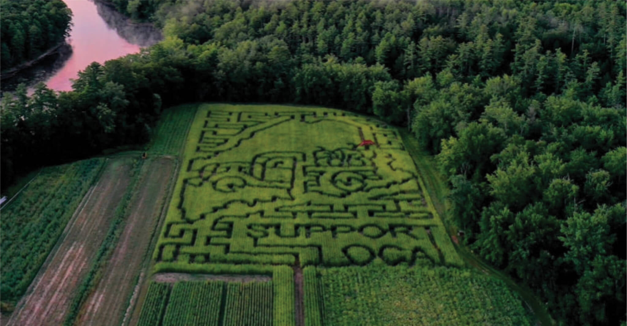 Get Lost In The Stalks Maine Corn Mazes